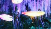 潘多拉的世界(阿凡達IMAX最新特輯)The World of Pandora高清視頻