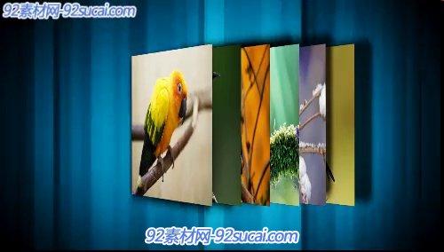《又见小鸟》会声会影模板公司企业广告电子相册宣传片头片尾素材