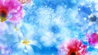 《梦幻的鲜花视频素材》Flowers on celestial background