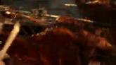 烤全羊烧烤过程高清实拍视频素材