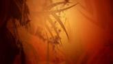秋色纹路一组高清背景视频素材