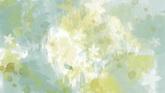 春天的花朵水墨结果一组高清配景视频素材