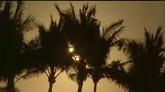 朝阳下的海岸椰树?#31243;?#28023;洋高清实拍视频素材