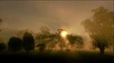 太阳光芒树影美丽高清实拍视频素材