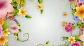 婚庆庆典 百花簇拥 花生长高清背景视频素材