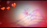 婚庆庆典 闪耀红色爱心流动高清动态背景视频素材