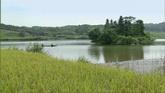 湖泊上面的小舟风光美景高清实拍视频素材