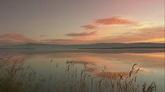 旭日下的湖面大景芦苇天然风景美景高清实拍视频素材