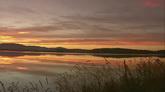 夕阳下的湖面大景芦苇自然风光美景2高清实拍视频素材