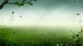 绿色草地树叶飘落舞台高清动态背景视频素材