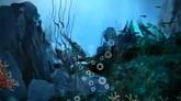 漂亮的海底世界高清动态背景视频素材