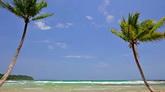 海滩风景特写高清实拍视频素材