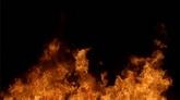 火焰燃烧高清特效视频素材