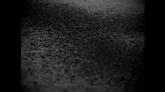 雨水滴落高清特效视频素材