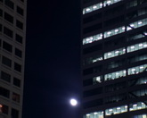 月亮升起特寫實拍視頻素材