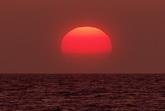 红色日落海边特写标清实拍视频素材
