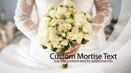 《结婚周年纪念相册ae模板》Ivory Wedding