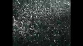 下雨 雨滴落地特写标清实拍视频素材