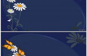唯美蝴蝶花瓣 素雅小野菊背景蝴蝶飞舞 高清动态视频素材
