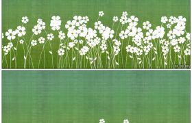 唯美花瓣舒展3 繁复配景小白花生长动画配景高清静态视频素材
