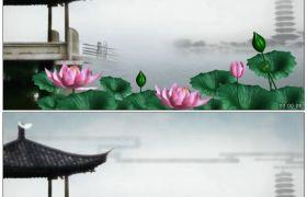 竹露荷风12 塘边水墨荷花中国风笠亭高清动态视频素材