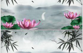 竹露荷风25 一片荷花池塘美艳荷花开放竹叶仙鹤高清静态视频素材