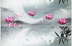 竹露荷风35 美艳荷花仙塘映月转动花瓣飘落中国风水墨动态素材
