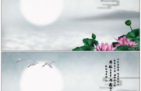 竹露荷风38 荷花塘映月仙鹤飞舞 高清动态视频素材