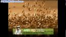 餅干3廣告視頻-日韓廣告參考欣賞
