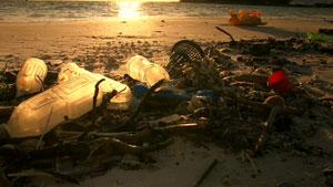 塑料污染的海滩—捡塑料垃圾镜头 环保类高清实拍
