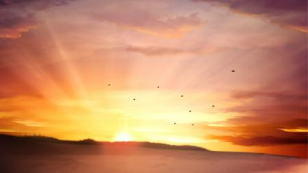黄昏落日余晖雁群飞过动态视频背景