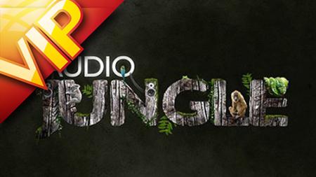 資源首發2014最新AudioJungle音效 超級音效庫精選第5套