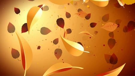 浓浓秋色各种树叶飘落 枫树叶子飘舞晚会演出舞台背景