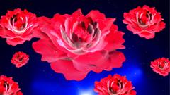 三维红色喜庆牡丹花转动开放的大气LED背景