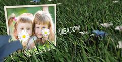 青葱草丛草地电子相册展示动画AE模板 Meadow