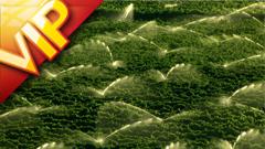 大型�r�I�C械化ξ植物灌溉�鼍案咔��拍