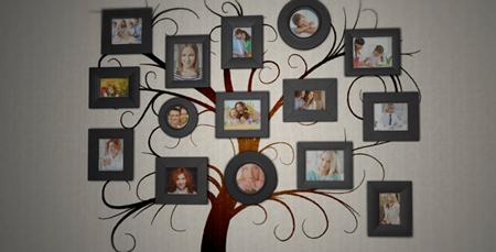 家庭背景墙照片树电子相册展示AE模板 Family Tree Photo Album