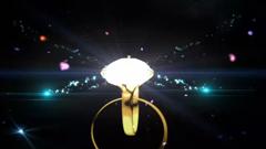 ?#20498;?#33457;瓣星空钻戒闪耀婚礼led视频素材(含音乐)