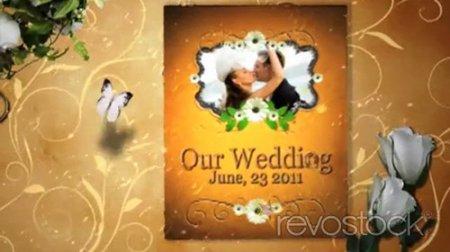 我们的婚礼甜蜜时刻电子相册AE模板Our Precious Wedding Moments