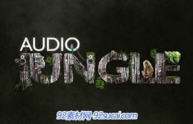 2014最新AudioJungle Bundle 背景音乐包合集第六版 2014 vol. 6