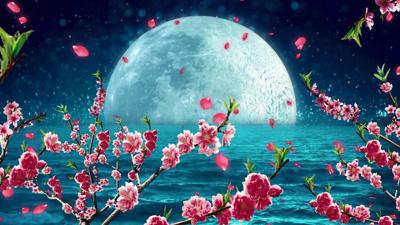 月亮桃花流星中秋节舞台晚会LED背景视频(含音乐)
