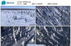 冰山雪原阳光向日葵海鸥鸳鸯戏水1024*576标清视频素材合集