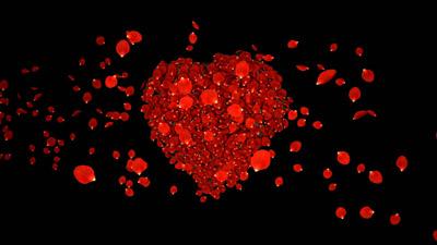 玫瑰花瓣组合成爱心心形再散落爱心花瓣 浪漫的婚礼婚庆视频素材
