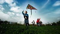 一群小朋友在草地上奔跑着放风筝 新郎新娘捧鲜花牵手奔跑的镜头
