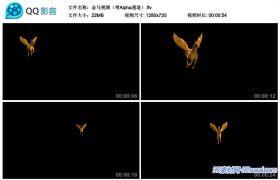 长翅膀的金马不同角度奔跑视频动态前景修饰素材 带Alpha通道