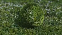 弹性草球标记变更动画AE模板-bouncy-grass-ball-logo-reveal