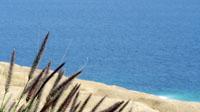 沙滩边的蓝色大海 4K超高清实拍