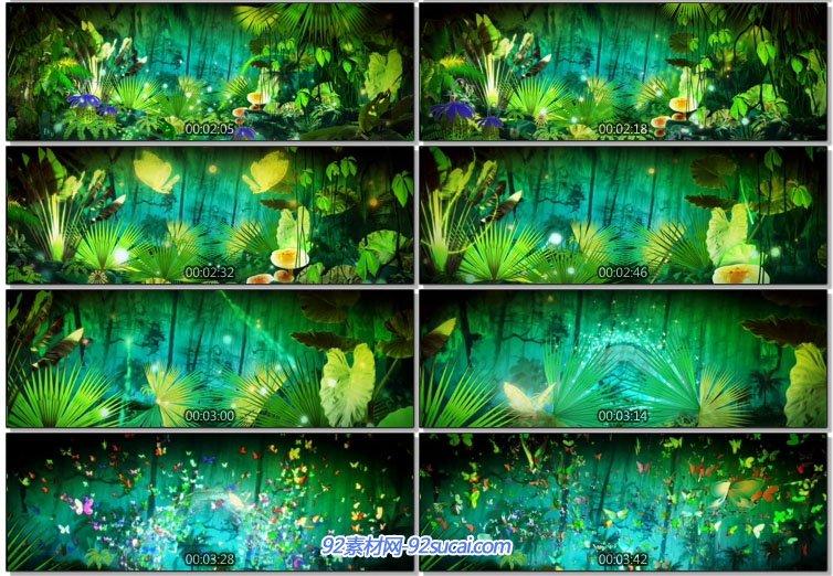 视频素材 舞台背景 > 日不落歌曲led舞台背景 热带雨林唯美生态森林