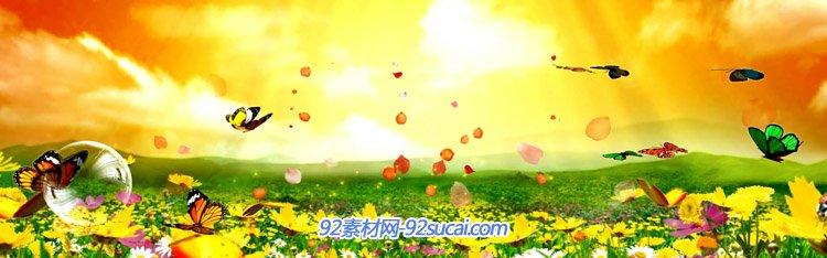 绸缎鲜花蝴蝶花海 中国民民族风爱我中华歌曲LED舞台背景视频素材