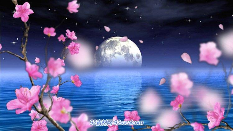 夜空明月海上圆月桃花映月 月亮主题动态舞台背景视频素材